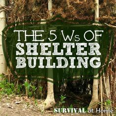 The 5 Ws (Worries) of Shelter Building