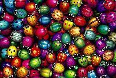 colores, colores, colores!!