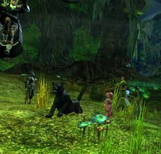 Guild Wars 2 screenshot photobomb. It came from above...  Thanks to @PawOfTheSouth for this one.
