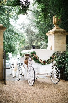 Traditional Horse and Carriage & Jacob & Pauline Photography & Pretty in White Films Marie's Wedding, Star Wedding, Wedding Themes, Wedding Events, Wedding Flowers, Dream Wedding, Wedding Cars, Rustic Wedding, Wedding Ideas