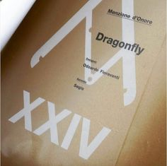 #Dragonfly received the Honorable Mention at the XXVI edition of #Compassodoro. Thanks to the designer, @odofioravanti