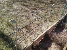Use old golf clubs for a trellis for the garden.  They were on their way to Goodwill, but not now.