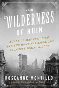 The Wilderness of Ruin: A Tale of Madness, Fire, and the Hunt for America's Youngest Serial Killer By Roseanne Montillo