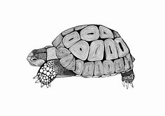 Tortoise Art Print / Original Artwork / Black and White / Wall Art by CarissaTanton on Etsy