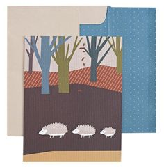 Hedgehog Boxed Note Card Set of 12, from Barnes and Noble