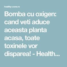 Bomba cu oxigen: cand veti aduce aceasta planta acasa, toate toxinele vor disparea! - Healthy Zone Natural Health Remedies, Home Remedies, Fitness Diet, Health Fitness, Arthritis Remedies, Metabolism, Good To Know, Health And Beauty, Herbalism