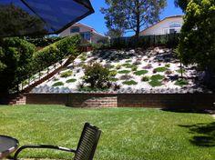 Beautiful Hillside Landscape Job In Moorpark Ventura County California. By Scarlettu0026#39;s ...