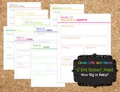 Instant Download 42 Week Pregnancy Journal Pages:  How Big Is Baby, Fruit…