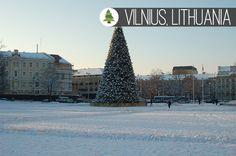 December Getaway: The Best Christmas Markets to Visit. VIlnius. Huffingtonpost.co.uk