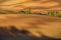 Autumn light and shadow in countryside by Pavel Rezac Autumn Lights, Light And Shadow, Tuscany, Countryside, Fields, Country Roads, Art Prints, Wall Art, Art Impressions