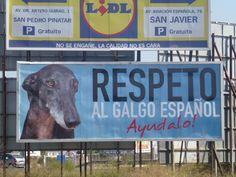 Galgos del Sol billboard, Murcia, Spain!