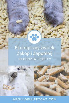 Kiedy napotkaliśmy polski i ekologiczny żwirek o wpadającej w ucho nazwie Zakop i Zapomnij to nie mogliśmy sobie odmówić wypróbowania go. Jak wypadł w naszych testach? Apollo, Lifestyle, Blog, Blogging, Apollo Program