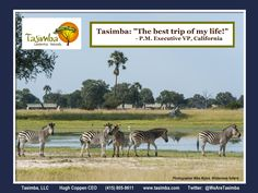 One quote says it all! For more information about our Tasimba safari please go to our website www.tasimba.com