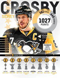 33e3c454d Pittsburgh Penguins ( penguins)