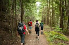 What Hiking Does To The Brain Is Pretty Amazing