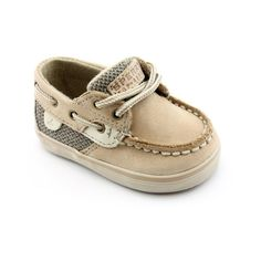 Sperry's for everyone!  I think we all have a pair in my family.
