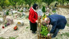 SandRamirez contra el maltrato animal. • www.luchandoporellos.es: UN CEMENTERIO Y CREMATORIO PARA ANIMALES NO HUMANO...
