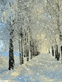 Snow Day Beautiful GIF - Tenor GIF Keyboard - Bring Personality To Your Conversations   Say more with Tenor Christmas Scenes, Christmas Art, Winter Christmas, Xmas, Winter Szenen, Winter Magic, Winter Pictures, Christmas Pictures, Gif Noel