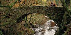 River Braan Bridge