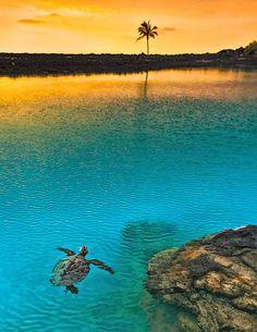 Sunset at Kiholo Bay, Big Island of Hawaii