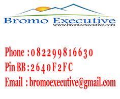 Contact Service Bromo Executive