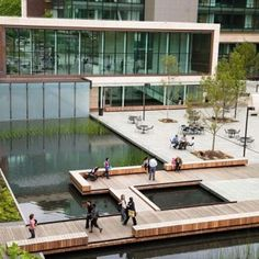 """National ASLA Award of Excellence."""" Campus landscape architecture and green roofs by Gustafson Guthrie Nichol. Architecture by NBBJ. Photo by Timothy Hursley. Landscape And Urbanism, Landscape Architecture Design, Urban Architecture, Seattle Architecture, Landscape Services, Architecture Graphics, Landscape Designs, School Architecture, Contemporary Landscape"""