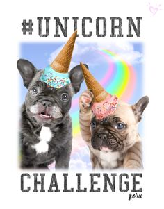 "Tough call. We're ""waffling"" on which uni-cone we like best. French Bulldog Puppy Unicorns"