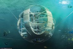 Entry to skyscraper competition will collect garbage in the Great Pacific Garbage Patch And reprocess for energy...