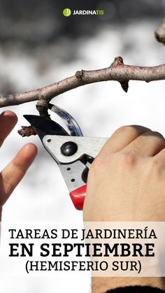 Plantar, Pruning Shears, Garden Tools, Patio, Flowers, Gardens, Witch, Growing Plants, Horticulture