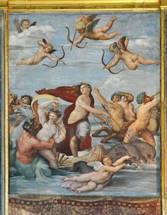 Farnesina Raffael Galatea - Villa Farnesina – Wikipedia