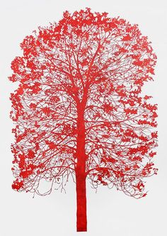 paper cut, by nicola moss