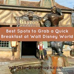 Best Stops to Grab a Quick Breakfast at Walt Disney World