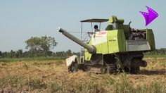 Paddy Combined Harvestor