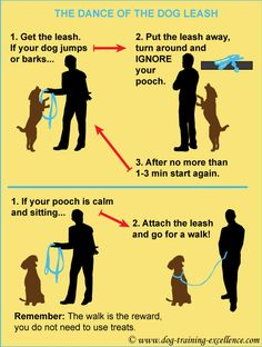 leash training your dog, dance of the dog leash, dog walking tips Read more in http://natureandhealth.net/