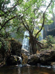 cascades perdues Plateau des Boloven Laos