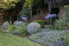 Mauve dans le jardin / Purple in the garden
