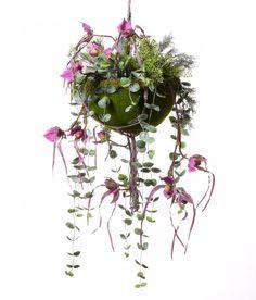 Kompozycja wisząca storczyk zielone rośliny