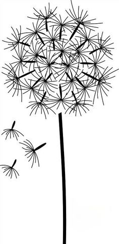 Dandelion Drawing: