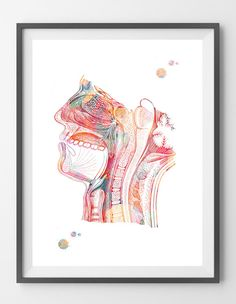 Respiratory system watercolor print Nose Mouth by MimiPrints