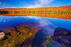 Canada, Quebec, La Mauricie...: Photo by Photographer Ya Zhang - photo.net