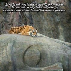 True honesty #acourseinmiracles #spirituality #enlightenment #love #God #forgiveness #holyspirit #jesus #oneness #perfection #buddha #happiness #spiritual #mystic #acim #unconditionallove #ego #dream #light by christian_crone