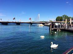 Geneva!