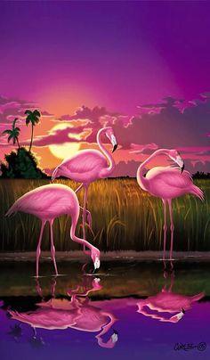 Flamingoes Flamingos Tropical Sunset Landscape Florida Everglades Large Hot Pink Purple Print Print By Walt Curlee