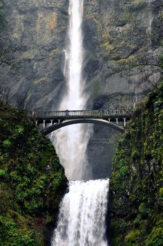 Multnomah Falls, Oregon -- I've been twice and fall in love a little more each time!! It has found it's way to my bucket list, via: living within driving distance and hiking to the top!!