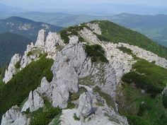 Slovakia, Gray top