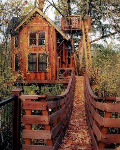 Beautiful Tree Houses, Cool Tree Houses, Treehouse Cabins, Treehouses, Cabin Tent, Tree House Designs, Tiny House Cabin, Tree House Homes, Cabin In The Woods