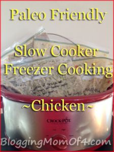 #Paleo Slow Cooker Freezer Meals
