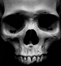 skull face | Flickr - Photo Sharing!