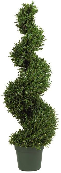 5 Dazzling ideas: Natural Home Decor Diy Gift Ideas natural home decor diy how to make.Natural Home Decor Feng Shui Tips natural home decor diy decoration.Natural Home Decor Rustic Ceilings. Boxwood Topiary, Topiary Trees, Potted Trees, Boxwood Hedge, Palm Trees, Artificial Topiary, Artificial Plants, Real Plants, Faux Plants