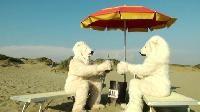Greenpeace, due orsi polari ad Ostia per salvare l'Artico . Al via il tour estivo della campagna www.savethearctic.org